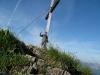 Trail - 1500 Höhenmeter